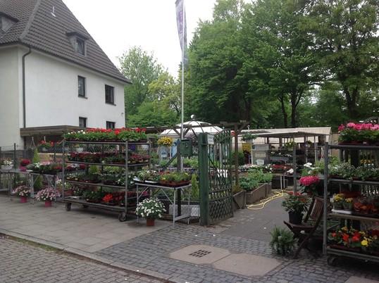Dauergrabpflege, Grabpflege Essen, Gartenmeister Böhmer