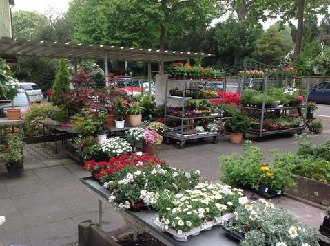Gartenpflege Grabstätte, Wechselbeetbepflanzung, Landschaftsbau Friedhof